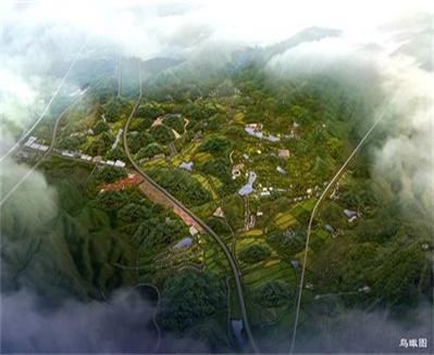 long8龙8国际首页指方绿心村庄规划